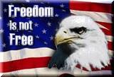 proceless-life-info-Americana-freedom-not-free-flag
